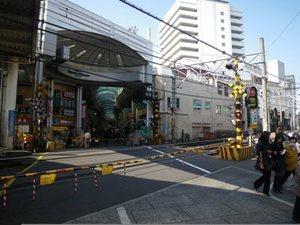 大山駅 踏切 画像.JPG